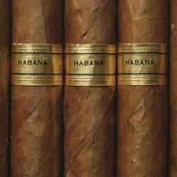Atmos Lab Habana Tobacco Flavour 10ml