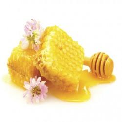 Atmos Lab Honey Flavour 10ml