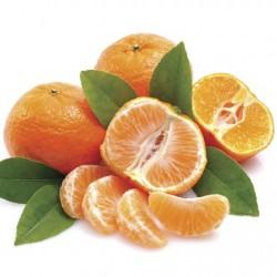 Atmos Lab Mandarine Flavour 10ml