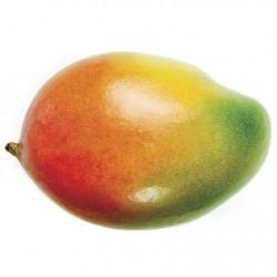 Atmos Lab Mango Flavour 10ml