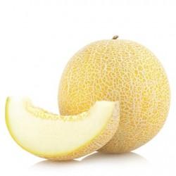 Atmos Lab Melon Flavour 10ml