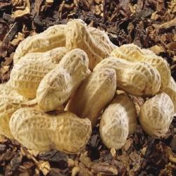 Atmos Lab Nutacco Tobacco Flavour 10ml